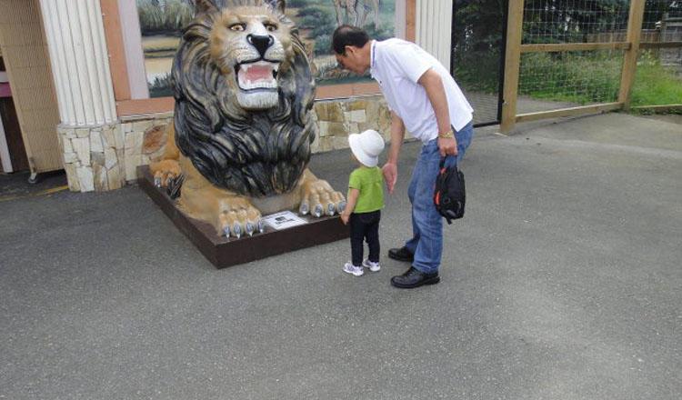 温哥华动物园Greater Vancouver Zoo,位于温哥华市郊约56公里的阿德哥洛夫Aldergrove,全年开放,园内饲养了犀牛、狮子、河马、熊等上百种野生动物,以及许多珍禽异兽。避开冬季时刻,3月至11月期间,温哥华动物园会安排在每天13:30表演喂狮子、老虎,15:00喂食河马的活动。温哥华动物园的北美野生动物园去,园方针对游客提供15分钟的游园导游服务,让游客有机会见到包括野生的熊、野狼、驼鹿、北美野牛等如何在属于自己的开放环境中自在生活。