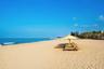 【椰林树影】海南 海口+三亚5日游【海口进出多样选择/蜈支洲岛/天堂森林公园/夜游三亚湾/分界洲岛/呀诺达+蜈支洲岛】