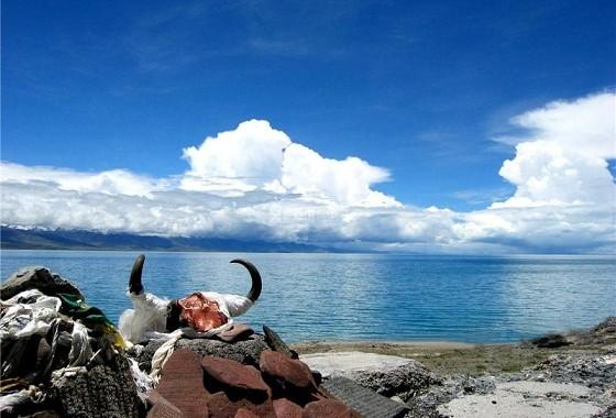 【西藏当地参团】羊湖半日游【岗巴拉山口/羊湖】