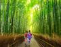 京都5日游,京都5日游费用-中青旅遨游网
