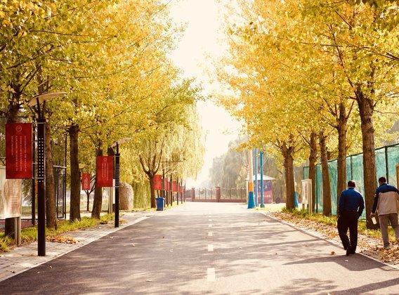 【遨游游学】未来科学家-北京冬令营 6日游【STEAM课程/清华导师/提升课本理解力】