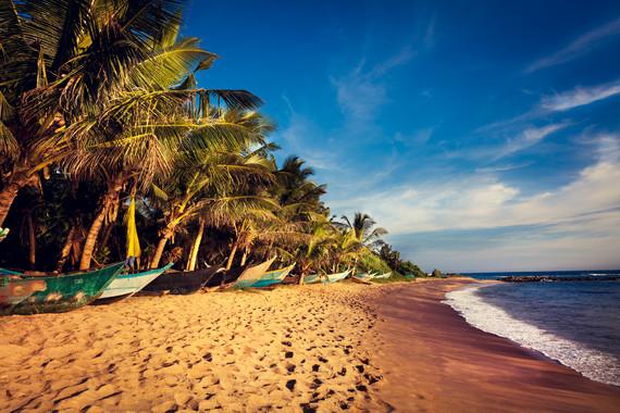 【野趣之旅】斯里兰卡/西格里亚/康提/努瓦伊利亚/科伦坡8天野趣之旅【广州往返】