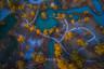 【遨游摄影】风情南疆-金秋胡杨摄影教学12日游【自然风光+异域人文+特有美食,实践/提升/真知/体验的摄影教学旅程】